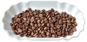 Joefrex Coffee Cuppling Sample Tray Set of 12 Pcs 1