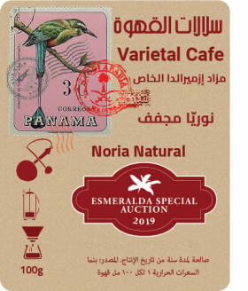 نوريا مجفف -  مزاد إزميرالدا بنما الخاص
